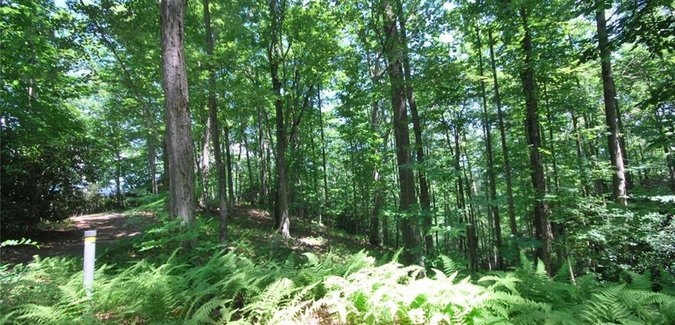 Image of 37 Poplar Crest Drive #37 in Pisgah Forest, North Carolina 28768 - MLS# 3142669