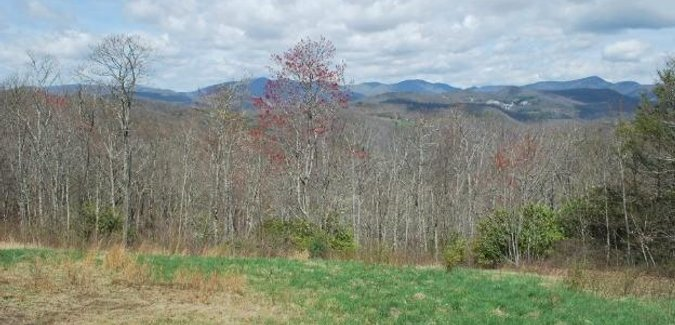 Image of 8945 Owens Gap Road in Tuckasegee, North Carolina 28783 - MLS# 3150658