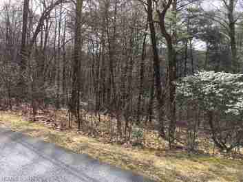 Tbd White Oak Forest Road #Lot EE in Fairview, NC 28730 - MLS# 3162421