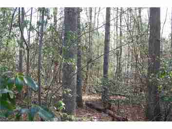 Lot #10 Larry Mcdonald Drive #10 in Hendersonville, North Carolina 28739 - MLS# 3169828