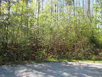 69 N Ridgeview Hill Drive #49 in Hendersonville, North Carolina 28792 - MLS# 3180132