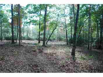 1915 White Tree Trail #LOT 218 in Arden, North Carolina 28704 - MLS# 3219508