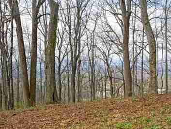 99999 Old Forest Drive #Lot 3 in Asheville, NC 28803 - MLS# 3232297