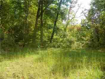 Lot 135 High Bluff Drive #135 in Weaverville, North Carolina 28787 - MLS# 3233364