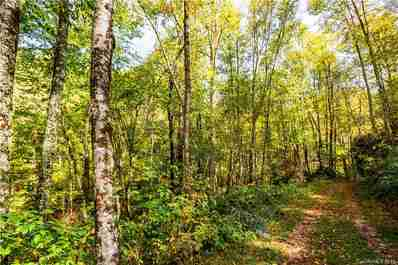 0000 Black Rock Road #12 in Qualla, NC 28719 - MLS# 3253863