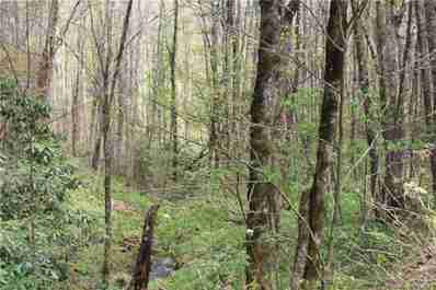 0000 Big Spring Trail #61 in Qualla, NC 28719 - MLS# 3253867