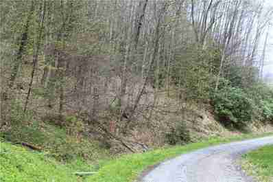 0000 Big Spring Trail #69 in Qualla, NC 28719 - MLS# 3253868