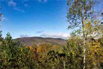 0000 Big Spring Trail #65 in Qualla, NC 28719 - MLS# 3253870