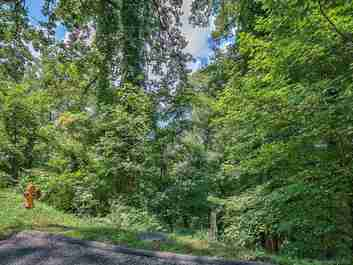 Lot 23 Peregrine Lane #23 in Asheville, NC 28804 - MLS# 3257131