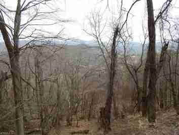 Lot 55 Peak Avenue in Waynesville, NC 28786 - MLS# 3265950