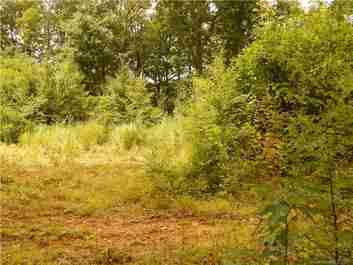 Lot 67 Plott Balsam Road in Maggie Valley, North Carolina 28751 - MLS# 3276598