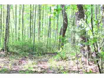 Lot2 Hosta Lane #2 in Hendersonville, North Carolina 28739 - MLS# 3277876