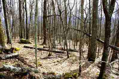 168-169-170 Unakite Lane #Multi Tracts in Mars Hill, NC 28754 - MLS# 3285011