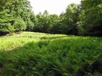 Tbd Pisgah Forest Road #Lot 10, Section B in Brevard, NC 28768 - MLS# 3311422