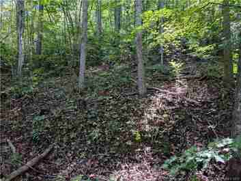 999 Buckeye Access Road in Swannanoa, NC 28778 - MLS# 3324344