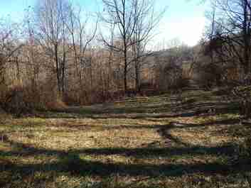 Lot 11 Coyote Hollow Road in Waynesville, NC 28785 - MLS# 3344059
