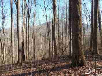 Lot 44 Fern Trail in Waynesville, North Carolina 28786 - MLS# 3351628