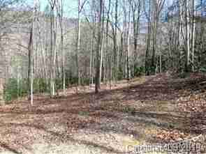 #4 Riversound Drive in Saluda, North Carolina 28773 - MLS# 3352849