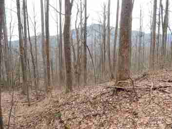 Lot 45 Fern Trail in Waynesville, NC 28786 - MLS# 3353303