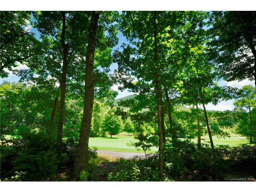 Image 1 for 351 Walnut Valley Parkway #Lot 222 in Arden, NC 28704 - MLS# 3359131