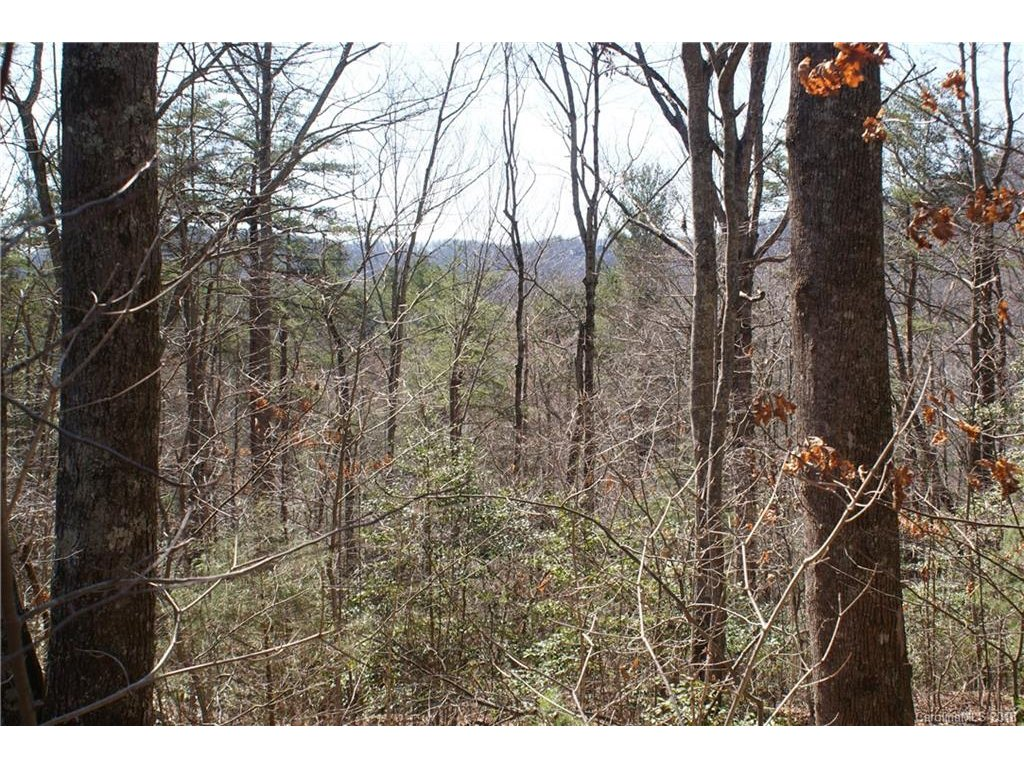 Image 1 for Lot 13 Staton Ridge Road in Saluda, North Carolina 28773 - MLS# 3363291