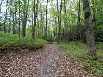 Tbd Big Branch Road #Lot 56A in Brevard, NC 28712 - MLS# 3366101