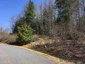 41 Feather Falls Trail #55 in Black Mountain, North Carolina 28711 - MLS# 3369458