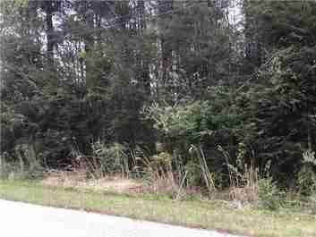 99999 Mine Gap Road in Flat Rock, North Carolina 28731 - MLS# 3383532