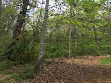 00 Thompson Cove Road in Clyde, NC 28721 - MLS# 3392514