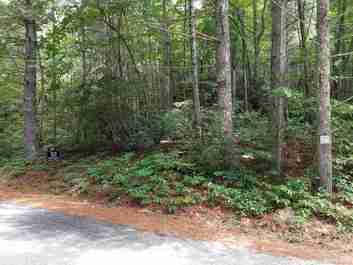 0 Old Mt Olivet Road #7 in Zirconia, North Carolina 28790 - MLS# 3417715
