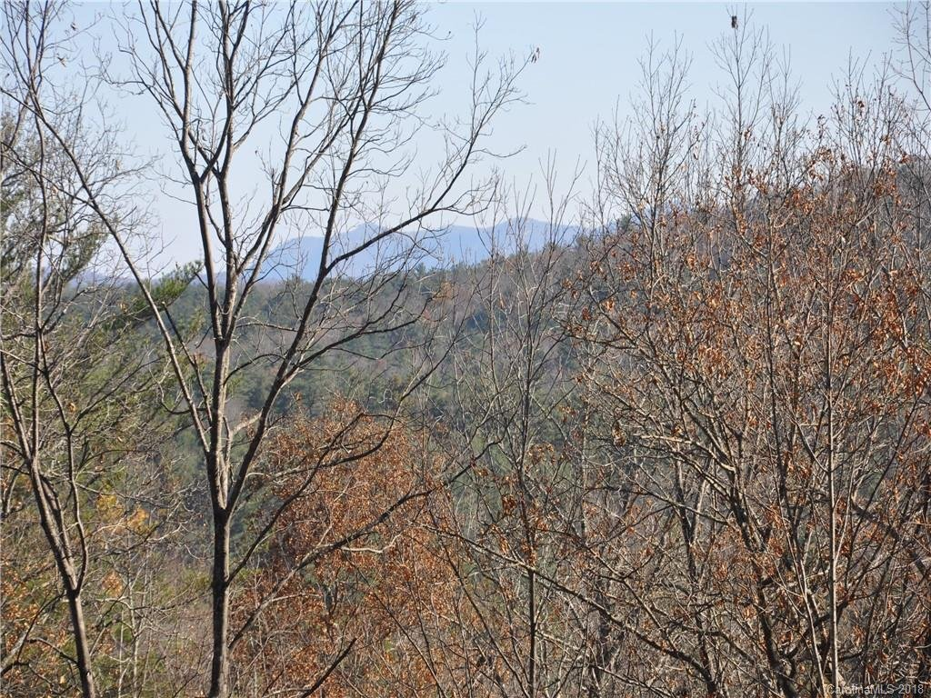 Image 1 for Lot 38 + Pheasant Run in Hendersonville, North Carolina 28739 - MLS# 3435565
