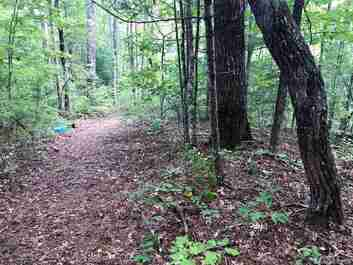 Lot #5 Old Yellow Branch Road #5 in Robbinsville, North Carolina 28771 - MLS# 3437334