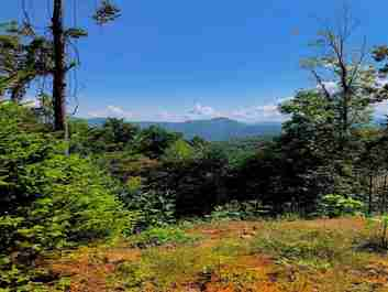 176 Ladderback Ridge #120C in Waynesville, NC 28785 - MLS# 3442207