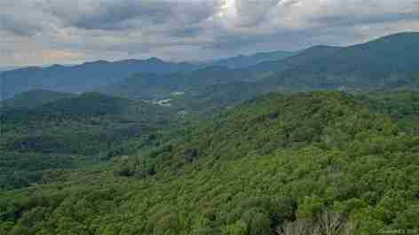1300 Elk Mountain Scenic Highway in Asheville, North Carolina 28804 - MLS# 3446202