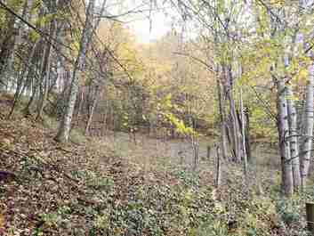 00 Woodmore Road in Waynesville, NC 28785 - MLS# 3449481