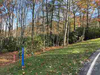 60 Old Hickory Trail #159 in Hendersonville, NC 28739 - MLS# 3450087