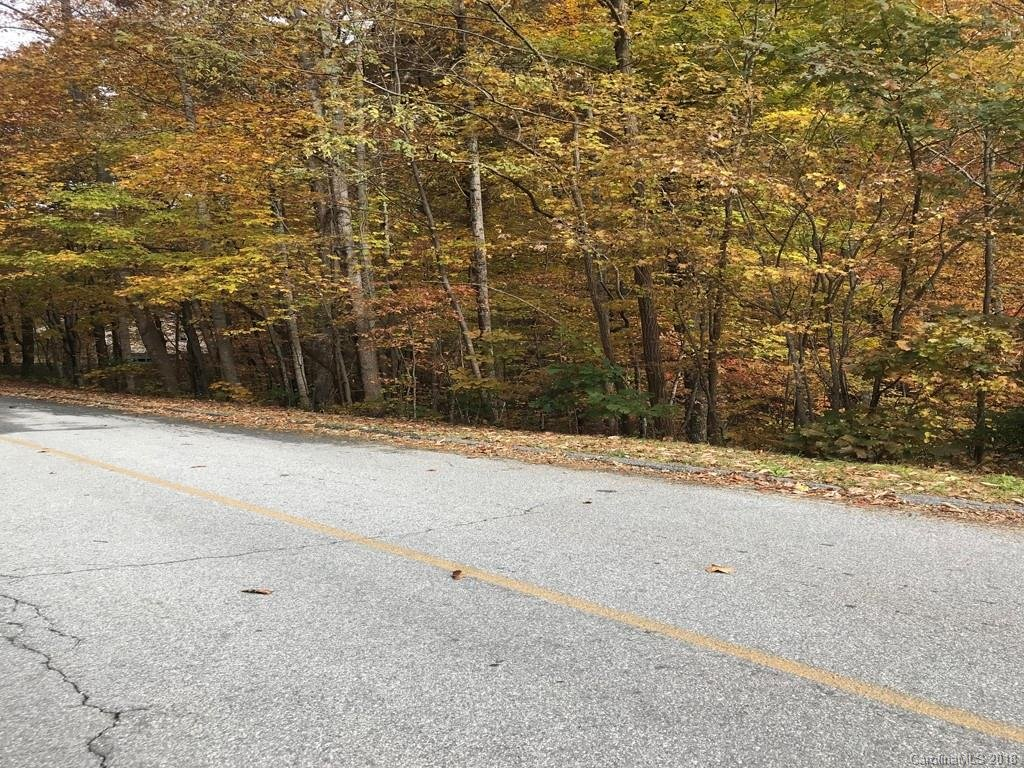 Image 1 for Lot 109 Timber Creek Road in Hendersonville, NC 28739 - MLS# 3450347