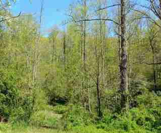 2196 Lamb Mountain Road in Hendersonville, NC 28792 - MLS# 3453203