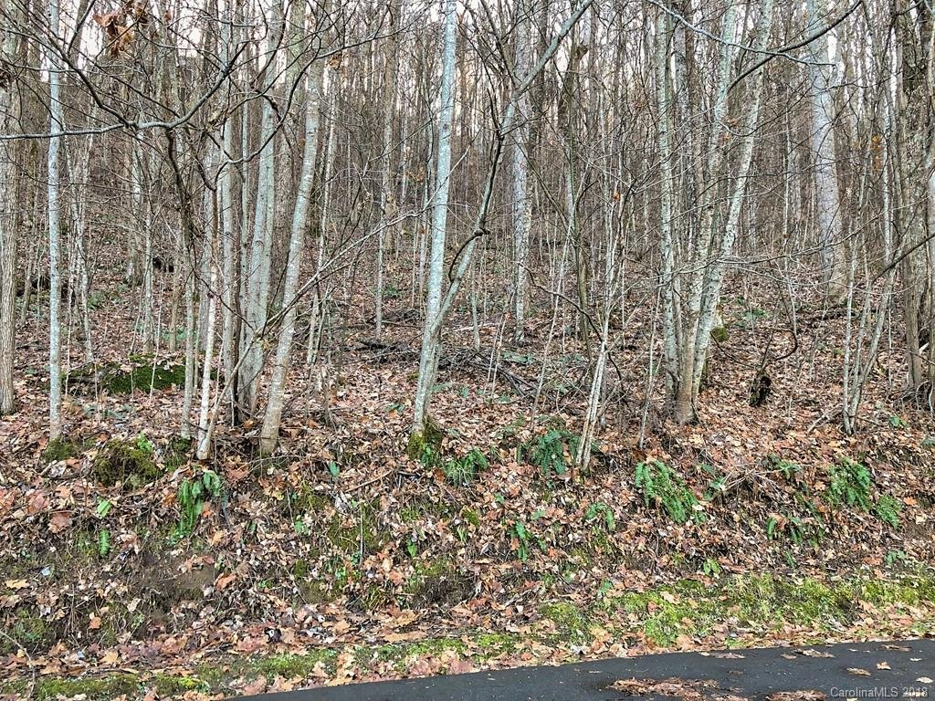 Image 1 for 00 Silver Maple Lane in Waynesville, North Carolina 28786 - MLS# 3455173
