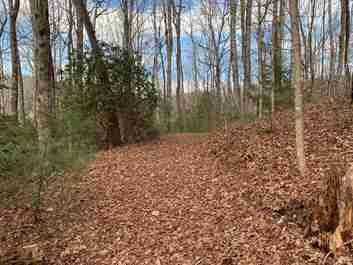 19 Lot Package Laurel Thicket Lane #19 lot package in Brevard, North Carolina 28712 - MLS# 3469824