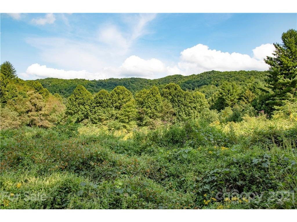 Image 1 for 6200 Meadow Fork Road in Hot Springs, NC 28743 - MLS# 3469909