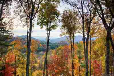 Tbd Longspur Lane #9-14 in Asheville, North Carolina 28804 - MLS# 3483889