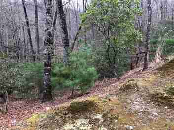 285 Shining Rock Path #5R in Horse Shoe, NC 28742 - MLS# 3490991