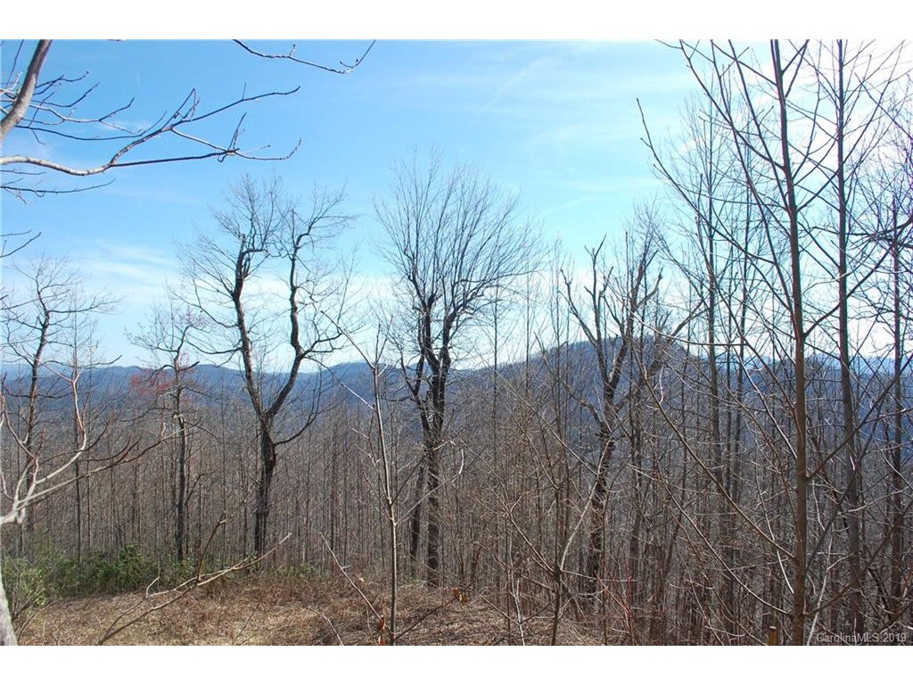 Image 1 for 000 Peaceful Night Trail #9 in Zirconia, NC 28790 - MLS# 3491034