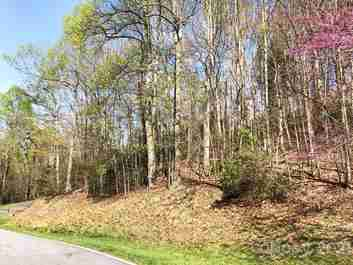 48 Falls Lane #396 in Hendersonville, NC 28739 - MLS# 3491669