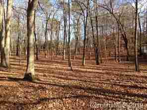 Lot 9 Club Road in Tryon, North Carolina 28782 - MLS# 3493864