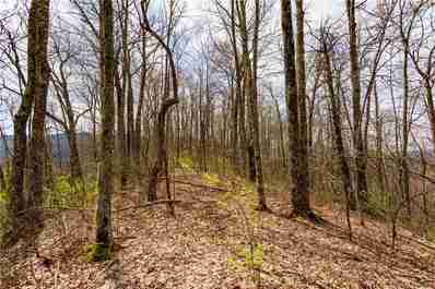 Lot 27 Black Rock Road #27 in Qualla, NC 28719 - MLS# 3501158