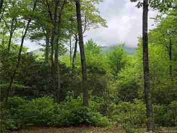 1 W Cardinal Drive #1 in Lake Toxaway, North Carolina 28747 - MLS# 3506787