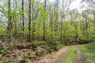 Lot 64 Big Springs Trail #64 in Qualla, NC 28719 - MLS# 3507144