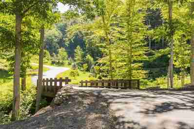 19 Twinflower Trail in Asheville, North Carolina 28804 - MLS# 3511293